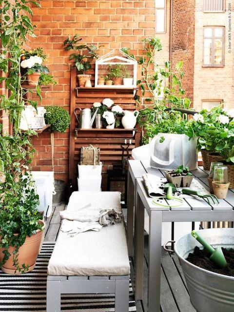 rastliny sú na balkóne vítané